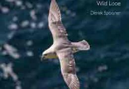 Wild Looe - a book by Dr Derek Spooner