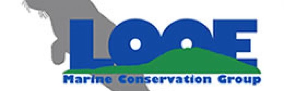 LMCG logo