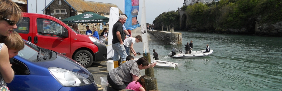 Looe Festival by the Sea