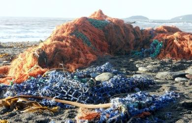 Ghost netting at Seaton Beach