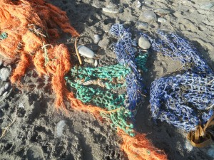 Beach clean fishing nets