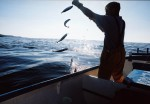 Handline mackerel fishing