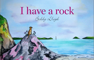 Biddy Lloyd - I have a rock