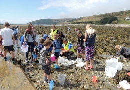 February half-term rock pool ramble