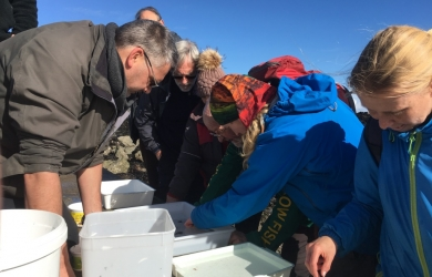 Intertidal identification course