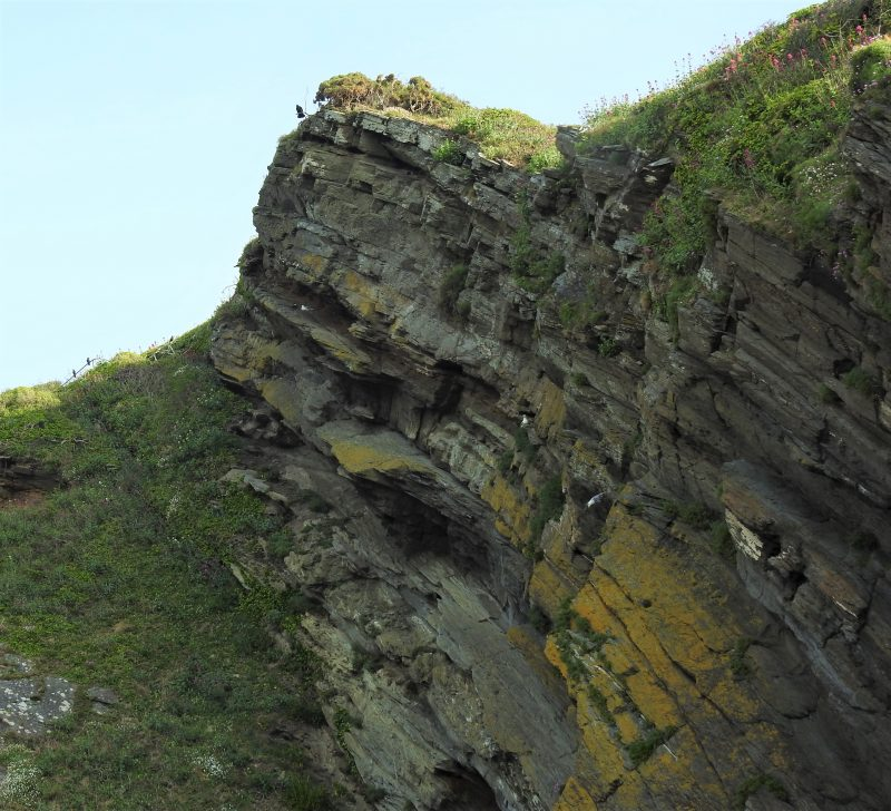 The cliff on Plaidy Lane